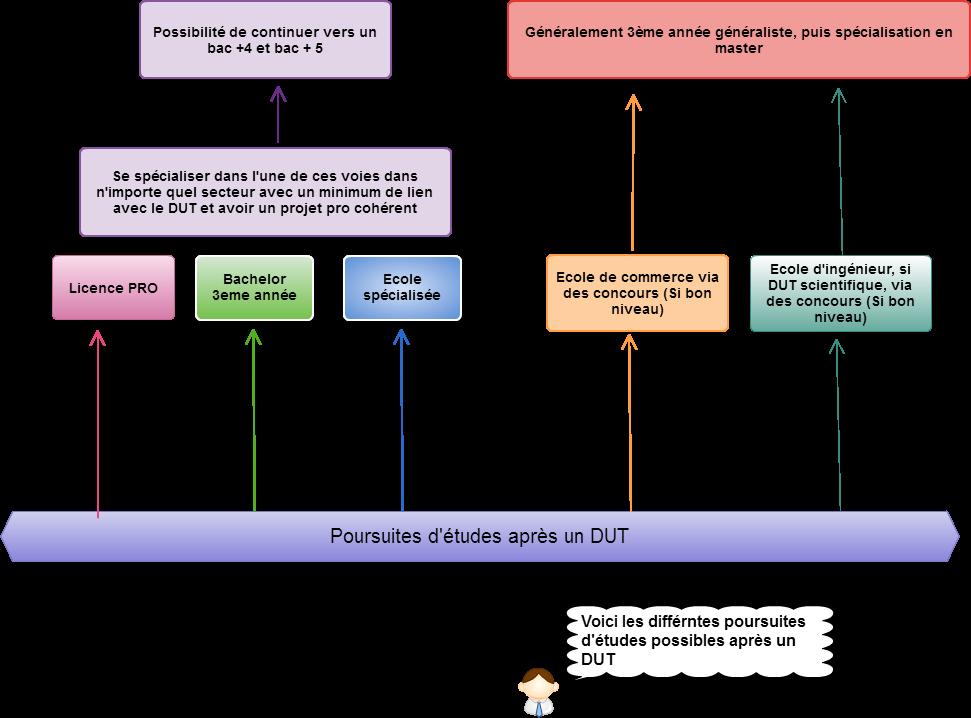 Schéma des études possibles après un DUT