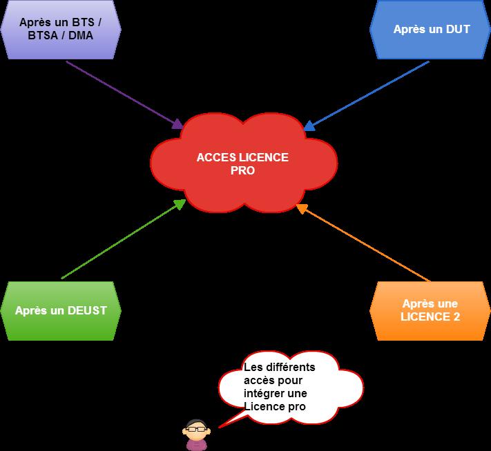 moyens d'accéder à la licence pro