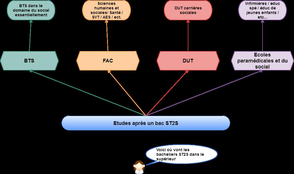 schéma des études post-bac st2s