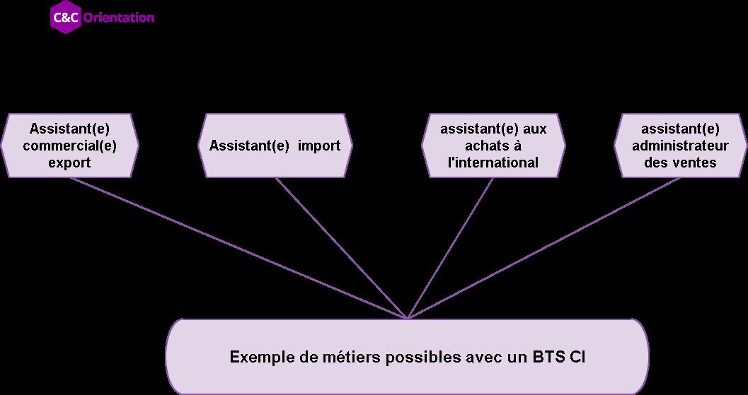 métiers après un BTS commerce international