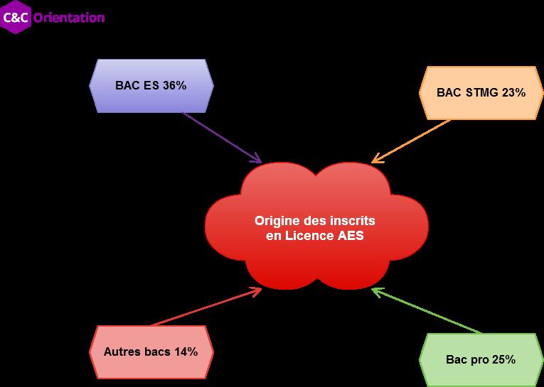 représentation des bacs en licence aes