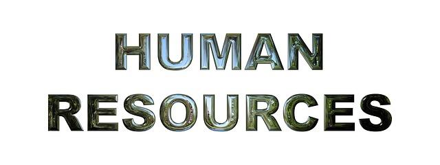 se réorienter en ressources humaines après une licence